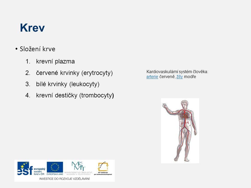 Krev Složení krve 1.krevní plazma 2.červené krvinky (erytrocyty) 3.bílé krvinky (leukocyty) 4.krevní destičky (trombocyty) Kardiovaskulární systém člo