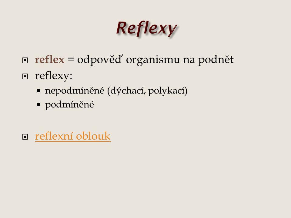  reflex = odpověď organismu na podnět  reflexy:  nepodmíněné (dýchací, polykací)  podmíněné  reflexní oblouk reflexní oblouk