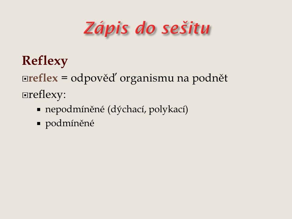 Reflexy  reflex = odpověď organismu na podnět  reflexy:  nepodmíněné (dýchací, polykací)  podmíněné