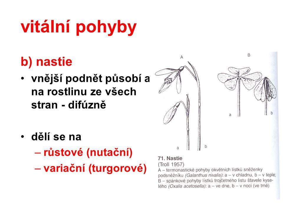 b) nastie vnější podnět působí a na rostlinu ze všech stran - difúzně dělí se na –růstové (nutační) –variační (turgorové) vitální pohyby