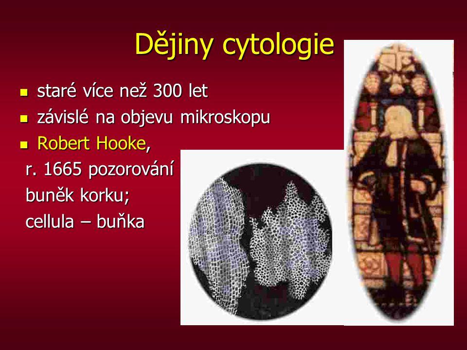 Dějiny cytologie staré více než 300 let staré více než 300 let závislé na objevu mikroskopu závislé na objevu mikroskopu Robert Hooke, Robert Hooke, r
