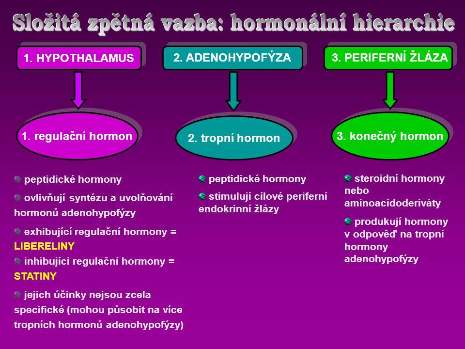 NADŘAZENÁ CENTRA CNS HYPOTALAMUS CÍLOVÝ ORGÁN PERIFERNÍ ENDOKRINNÍ ŽLÁZY ADENOHYPOFÝZA regulační hormony tropní hormony hormony periferních žláz