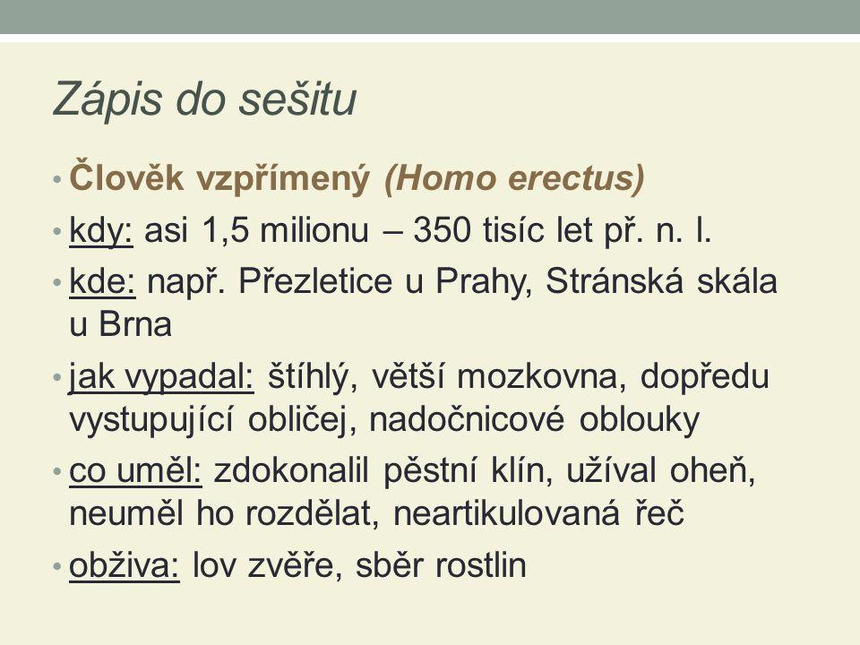 Zápis do sešitu Člověk vzpřímený (Homo erectus) kdy: asi 1,5 milionu – 350 tisíc let př.