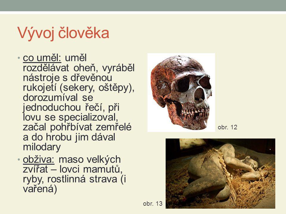 Vývoj člověka co uměl: uměl rozdělávat oheň, vyráběl nástroje s dřevěnou rukojetí (sekery, oštěpy), dorozumíval se jednoduchou řečí, při lovu se specializoval, začal pohřbívat zemřelé a do hrobu jim dával milodary obživa: maso velkých zvířat – lovci mamutů, ryby, rostlinná strava (i vařená) obr.
