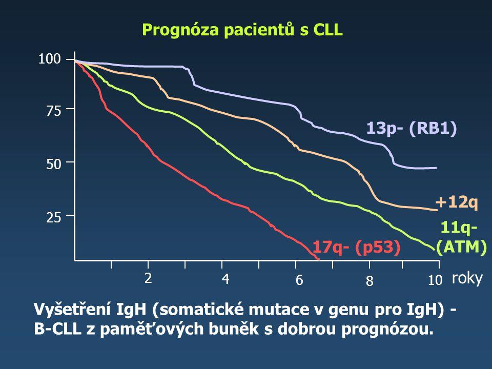 Prognóza pacientů s CLL Vyšetření IgH (somatické mutace v genu pro IgH) - B-CLL z paměťových buněk s dobrou prognózou. roky 2 4 6 8 25 50 75 100 13p-