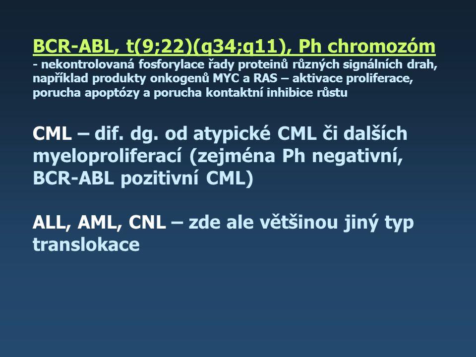 BCR-ABL, t(9;22)(q34;q11), Ph chromozóm - nekontrolovaná fosforylace řady proteinů různých signálních drah, například produkty onkogenů MYC a RAS – ak