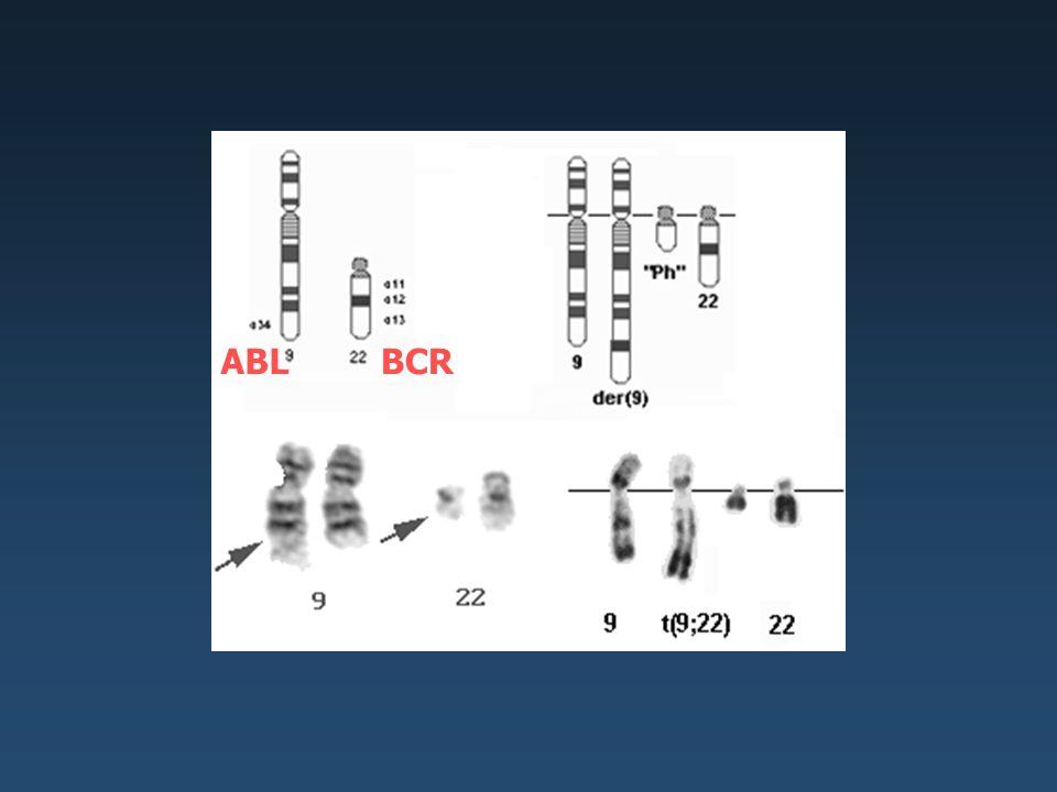 Monitorování minimální zbytkové nemoci Relaps - Hematologický - Cytogenetický - Molekulárně genetický Citlivost - Cytologie 1-10 % - Cytogenetika (FISH) 0,1% - Imunofenotypizace 0,1 % - Molekulární genetika - jednostupňová PCR 0,01 % - dvoustupňová PCR 0,0001 % Pro většinu zbytkové nemoci leukemií je důležité mít metodu s citlivostí nejméně 0,01 %.