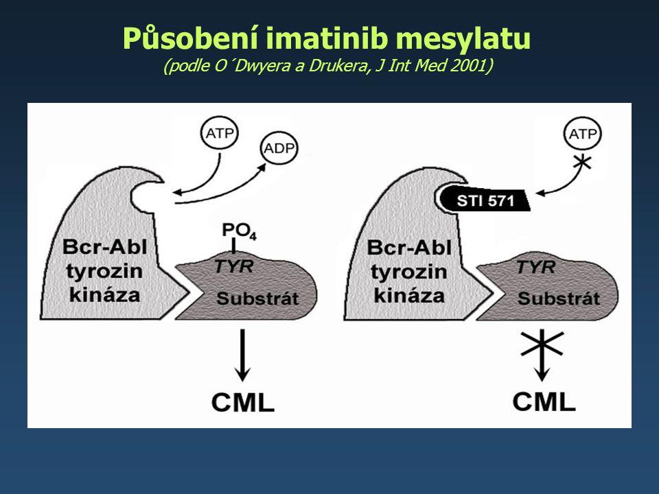 Působení imatinib mesylatu (podle O´Dwyera a Drukera, J Int Med 2001)