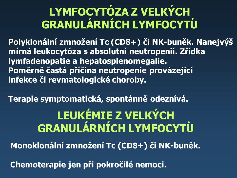 LYMFOCYTÓZA Z VELKÝCH GRANULÁRNÍCH LYMFOCYTU Polyklonální zmnožení Tc (CD8+) či NK-buněk. Nanejvýš mírná leukocytóza s absolutní neutropenií. Zřídka l
