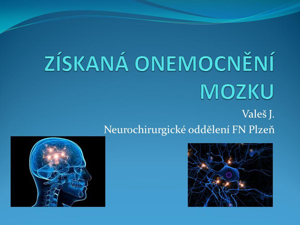 Valeš J. Neurochirurgické oddělení FN Plzeň