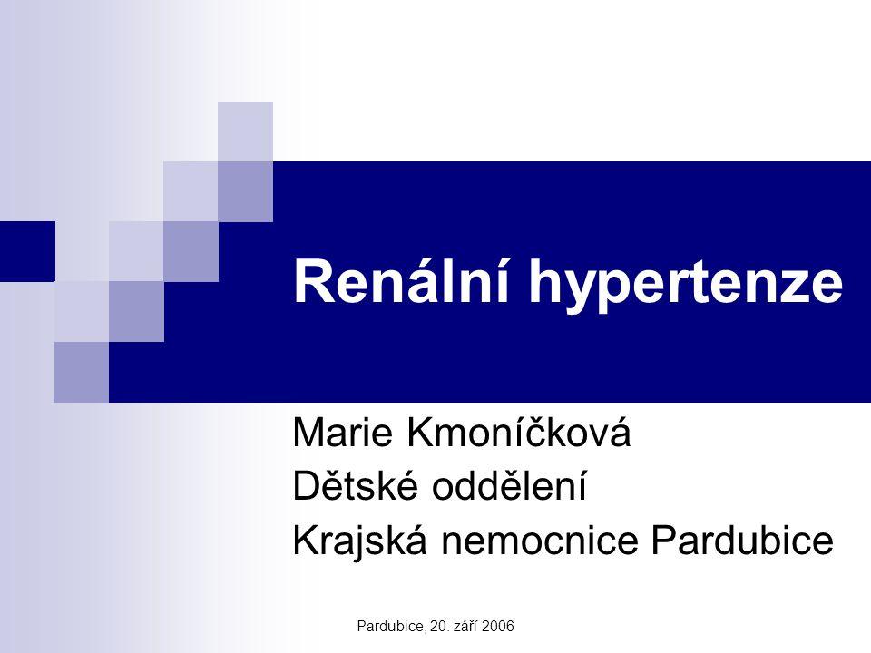 Pardubice, 20. září 2006 Renální hypertenze Marie Kmoníčková Dětské oddělení Krajská nemocnice Pardubice