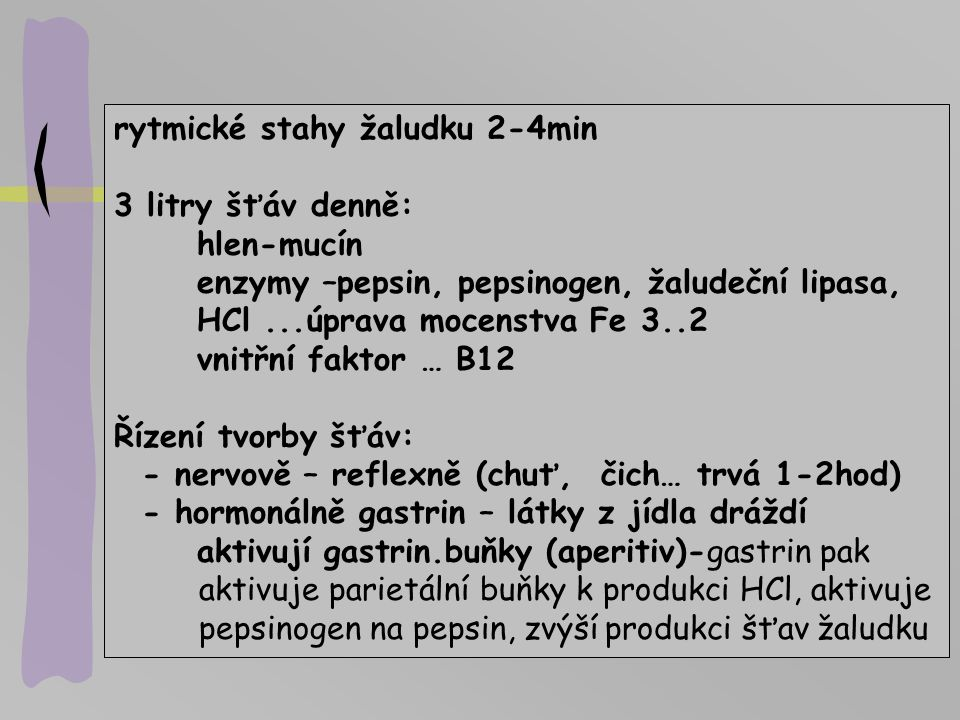 rytmické stahy žaludku 2-4min 3 litry šťáv denně: hlen-mucín enzymy –pepsin, pepsinogen, žaludeční lipasa, HCl...úprava mocenstva Fe 3..2 vnitřní fakt