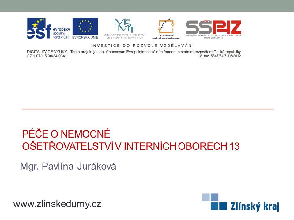 PÉČE O NEMOCNÉ OŠETŘOVATELSTVÍ V INTERNÍCH OBORECH 13 Mgr. Pavlína Juráková www.zlinskedumy.cz
