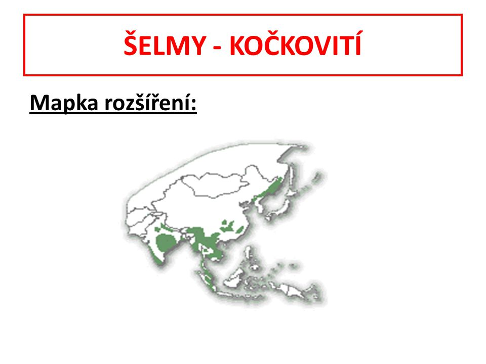 ŠELMY - KOČKOVITÍ Mapka rozšíření: