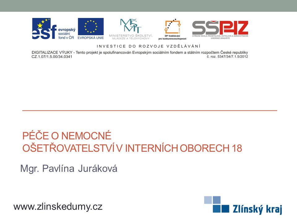 PÉČE O NEMOCNÉ OŠETŘOVATELSTVÍ V INTERNÍCH OBORECH 18 Mgr. Pavlína Juráková www.zlinskedumy.cz