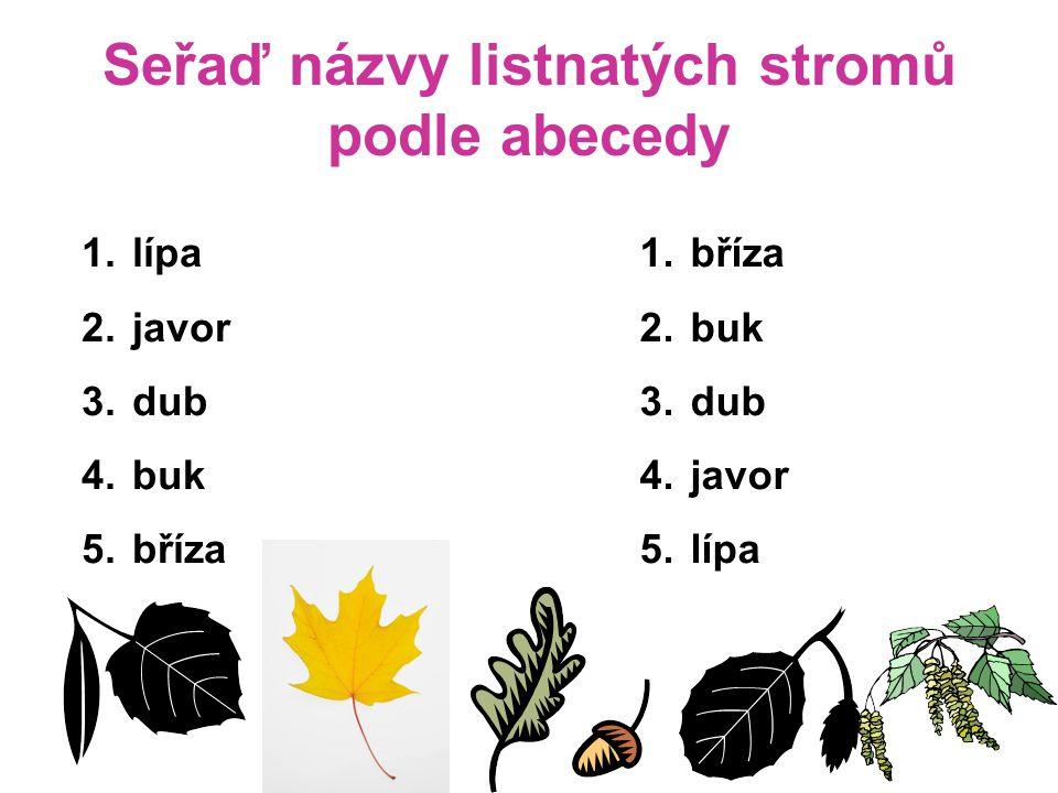 Seřaď názvy listnatých stromů podle abecedy 1. lípa 2. javor 3. dub 4. buk 5. bříza 1. bříza 2. buk 3. dub 4. javor 5. lípa