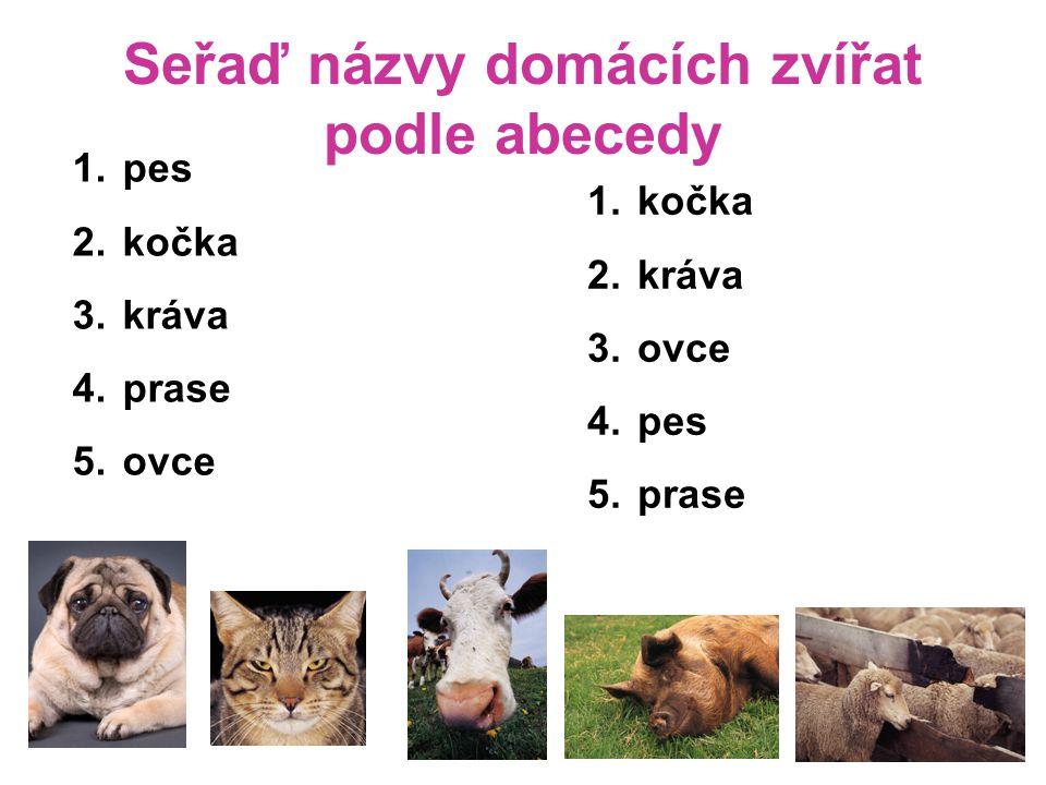 Seřaď názvy domácích zvířat podle abecedy 1. pes 2. kočka 3. kráva 4. prase 5. ovce 1. kočka 2. kráva 3. ovce 4. pes 5. prase