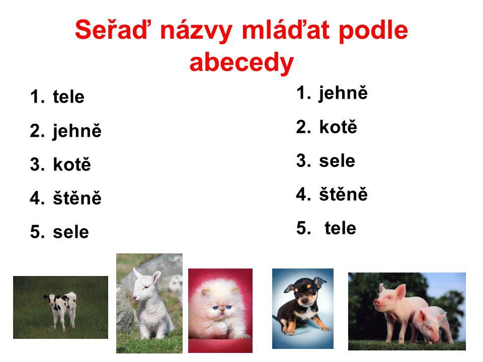 Seřaď názvy mláďat podle abecedy 1. tele 2. jehně 3. kotě 4. štěně 5. sele 1. jehně 2. kotě 3. sele 4. štěně 5. tele