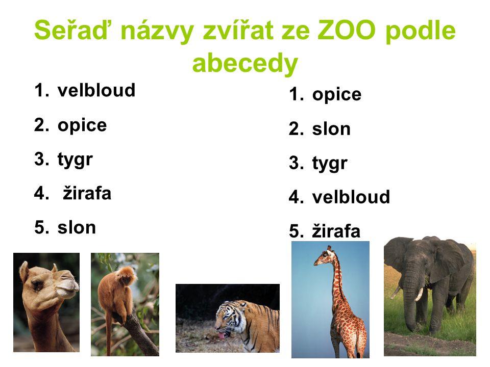 Seřaď názvy zvířat ze ZOO podle abecedy 1. velbloud 2. opice 3. tygr 4. žirafa 5. slon 1. opice 2. slon 3. tygr 4. velbloud 5. žirafa