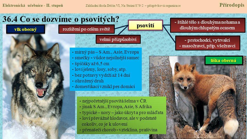 36.4 Co se dozvíme o psovitých.Elektronická učebnice - II.