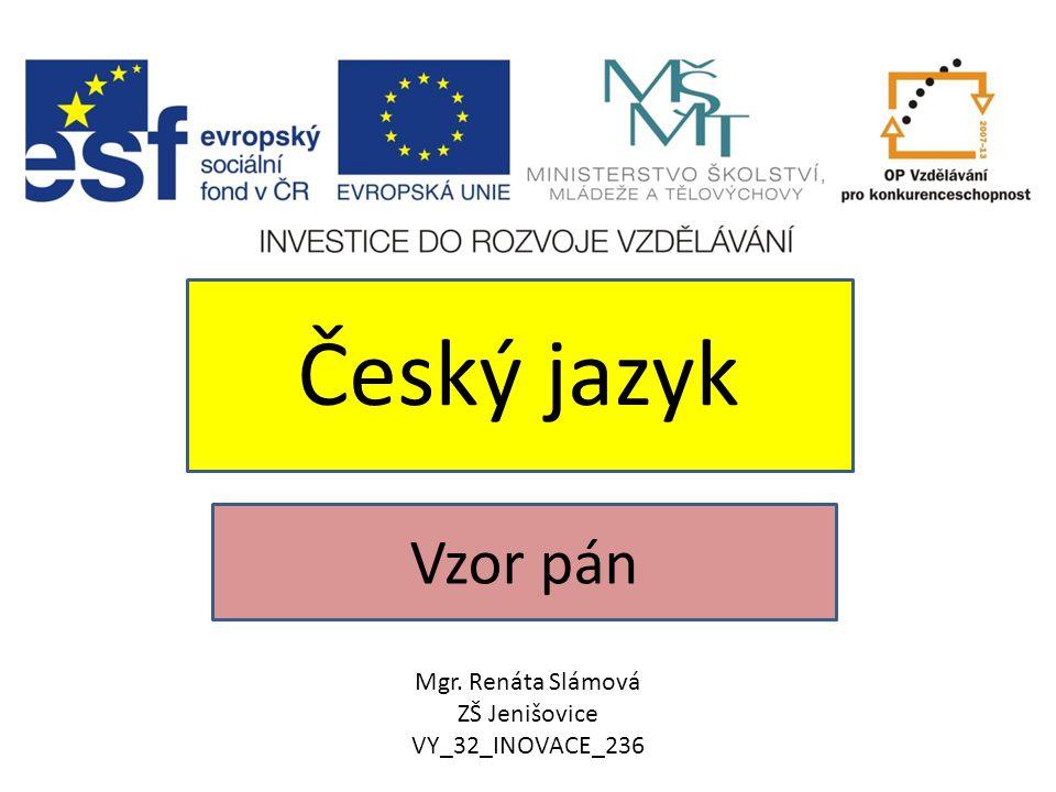 Vzor pán Český jazyk Mgr. Renáta Slámová ZŠ Jenišovice VY_32_INOVACE_236