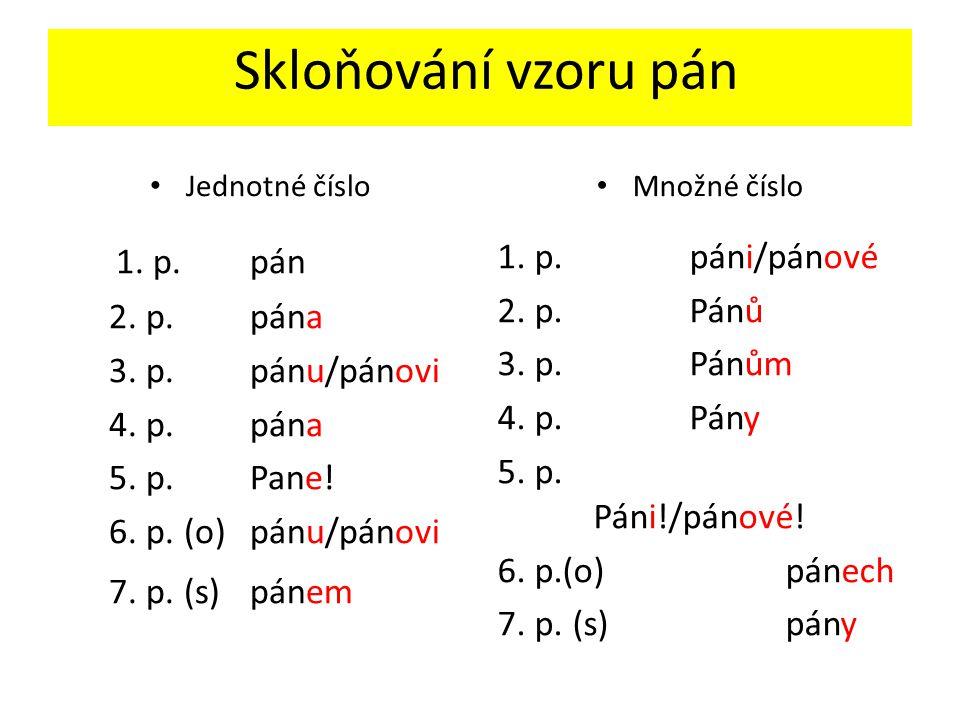 Skloňování vzoru pán Jednotné číslo 1. p. pán 2. p.pána 3. p.pánu/pánovi 4. p.pána 5. p.Pane! 6. p. (o)pánu/pánovi 7. p. (s)pánem Množné číslo 1. p.pá