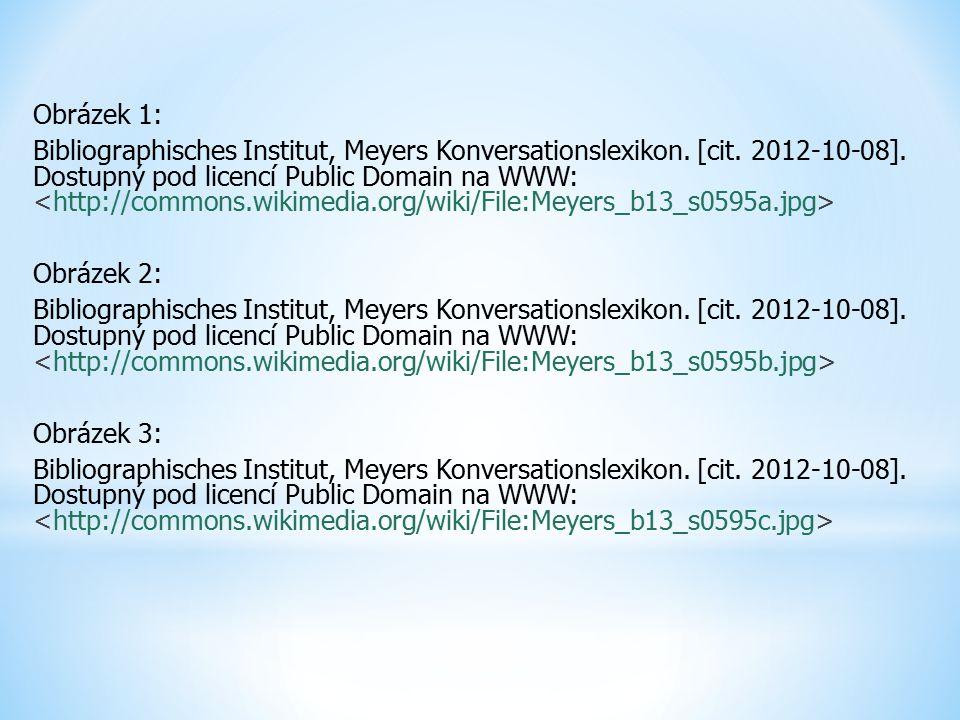 Obrázek 1: Bibliographisches Institut, Meyers Konversationslexikon.