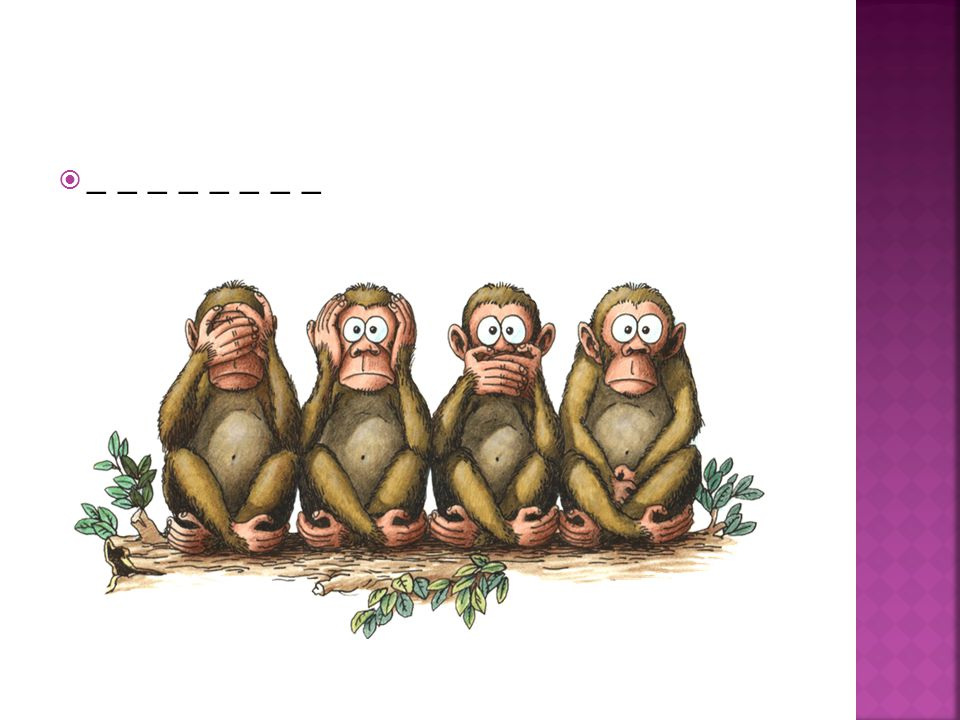  1) a crocodile  2) a bear  3) a kangaroo  4) a tiger  5) a camel  6) an elephant  7) a monkey