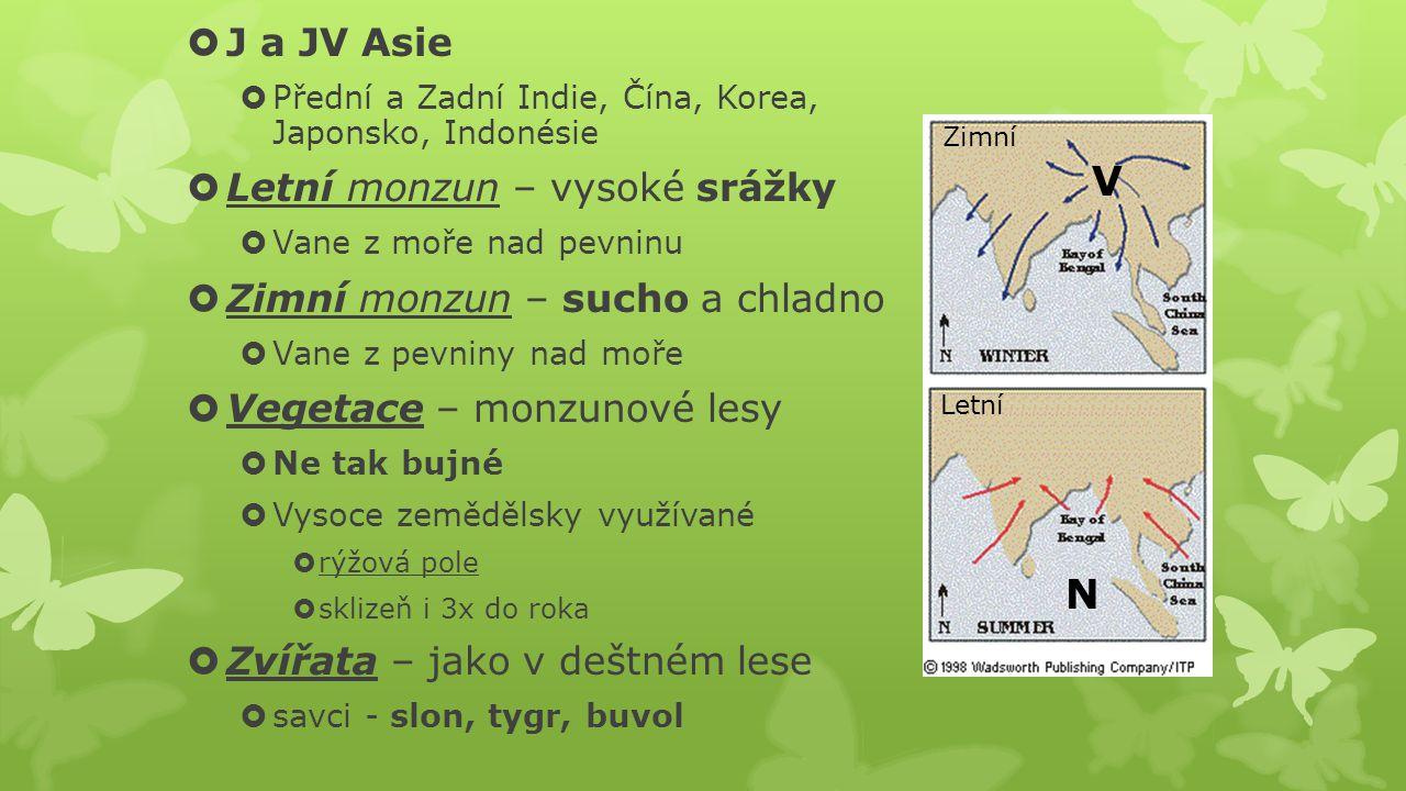  J a JV Asie  Přední a Zadní Indie, Čína, Korea, Japonsko, Indonésie  Letní monzun – vysoké srážky  Vane z moře nad pevninu  Zimní monzun – sucho