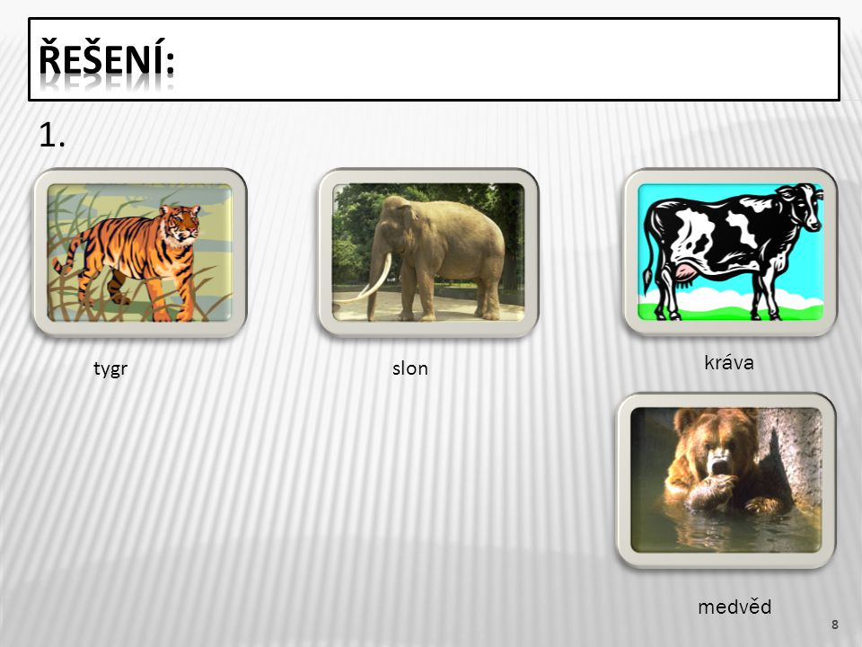 9  5.krajta, kobra, zmije, užovka  3. Žirafa a kráva mají mláďata.