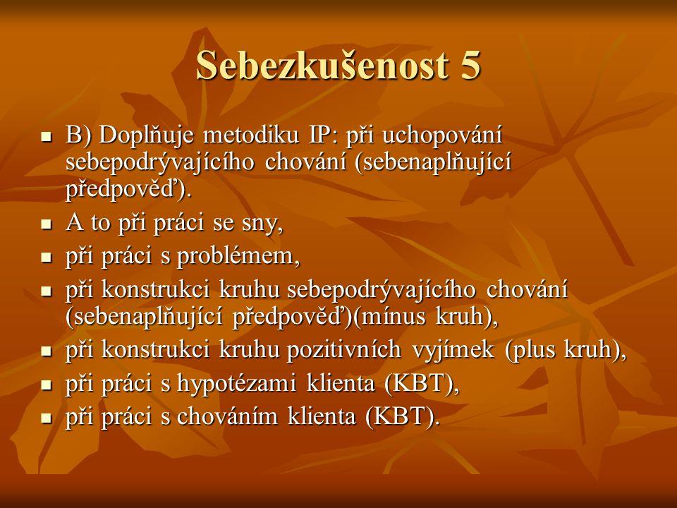 Sebezkušenost 5 B) Doplňuje metodiku IP: při uchopování sebepodrývajícího chování (sebenaplňující předpověď).