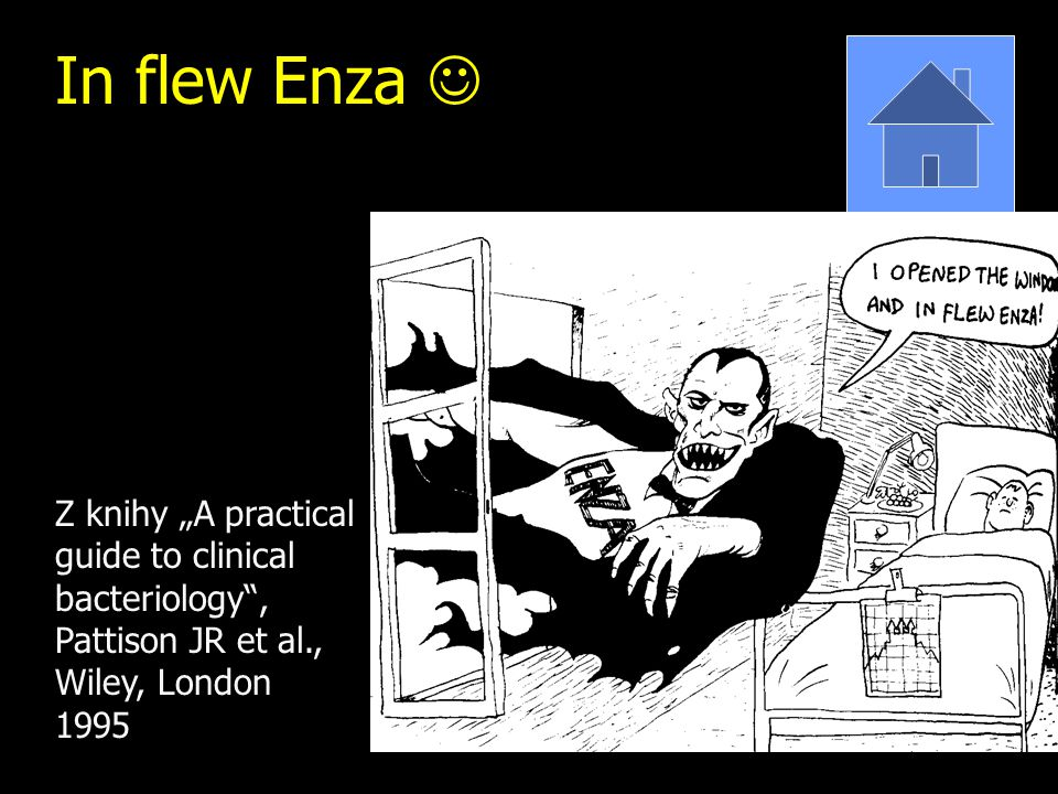 "In flew Enza Z knihy ""A practical guide to clinical bacteriology"", Pattison JR et al., Wiley, London 1995"