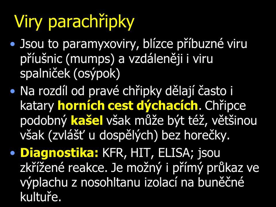 Viry parachřipky Jsou to paramyxoviry, blízce příbuzné viru příušnic (mumps) a vzdáleněji i viru spalniček (osýpok) Na rozdíl od pravé chřipky dělají často i katary horních cest dýchacích.