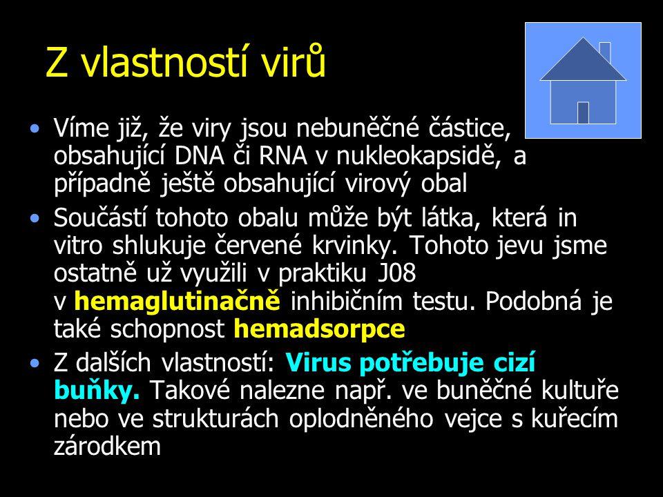Z vlastností virů Víme již, že viry jsou nebuněčné částice, obsahující DNA či RNA v nukleokapsidě, a případně ještě obsahující virový obal Součástí tohoto obalu může být látka, která in vitro shlukuje červené krvinky.
