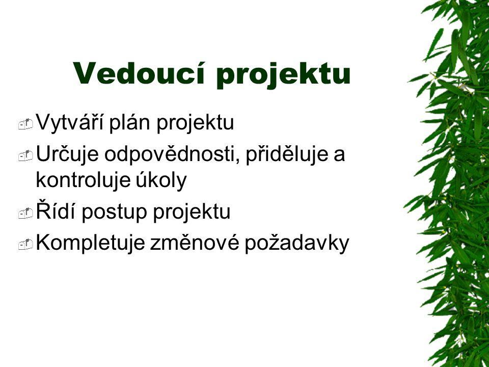 Vedoucí projektu  Vytváří plán projektu  Určuje odpovědnosti, přiděluje a kontroluje úkoly  Řídí postup projektu  Kompletuje změnové požadavky