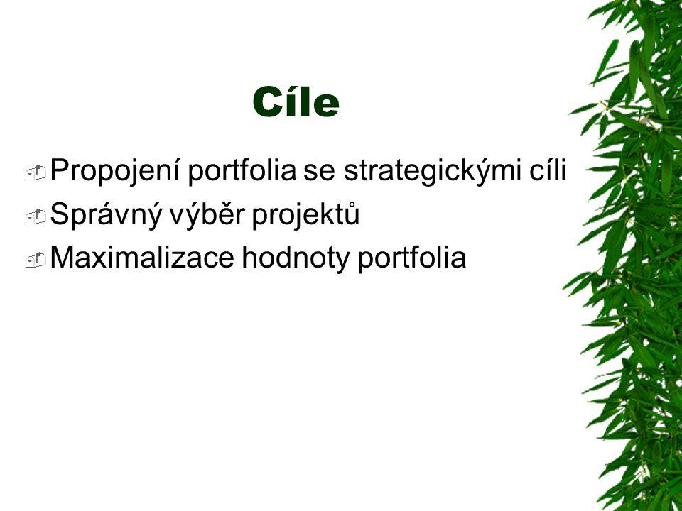 Cíle  Propojení portfolia se strategickými cíli  Správný výběr projektů  Maximalizace hodnoty portfolia