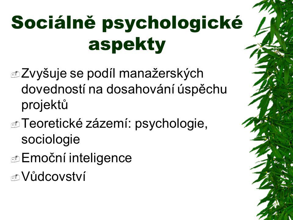  Zvyšuje se podíl manažerských dovedností na dosahování úspěchu projektů  Teoretické zázemí: psychologie, sociologie  Emoční inteligence  Vůdcovst