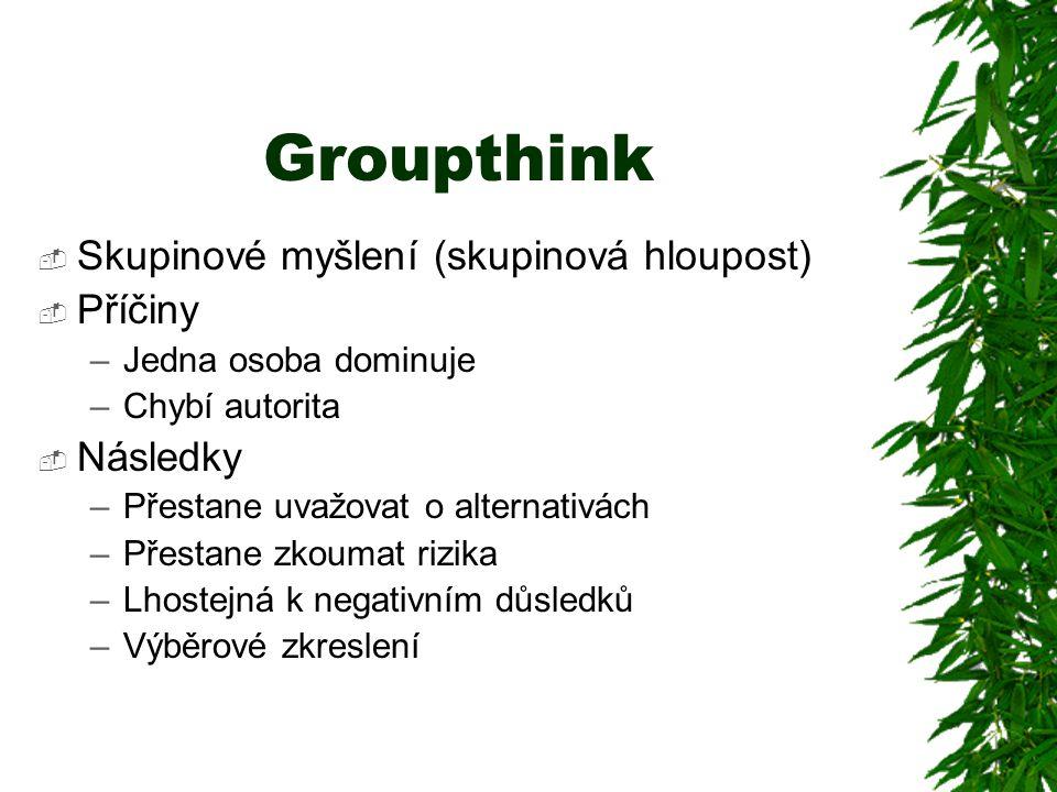 Groupthink  Skupinové myšlení (skupinová hloupost)  Příčiny –Jedna osoba dominuje –Chybí autorita  Následky –Přestane uvažovat o alternativách –Pře