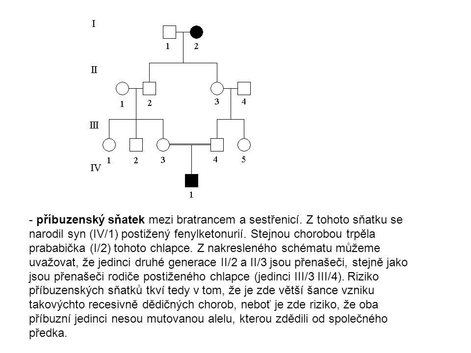 Gonosomálně recesivní typ dědičnosti (X-vázaná dědičnost) (hemofilie A) - dvěma zdravým rodičům se narodili 2 chlapci (II/3 a II/5) s hemofilií.