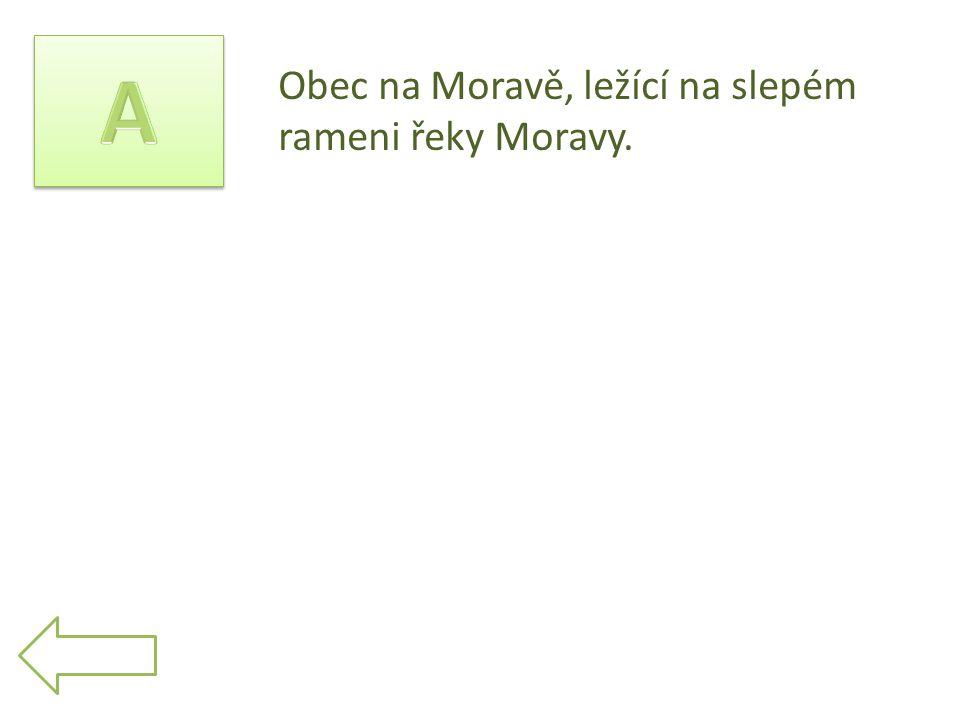 Obec na Moravě, ležící na slepém rameni řeky Moravy.