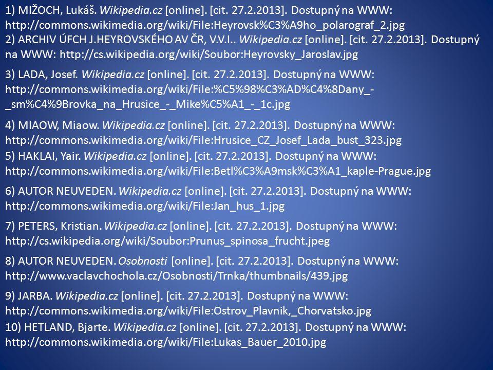 1) MIŽOCH, Lukáš. Wikipedia.cz [online]. [cit. 27.2.2013].