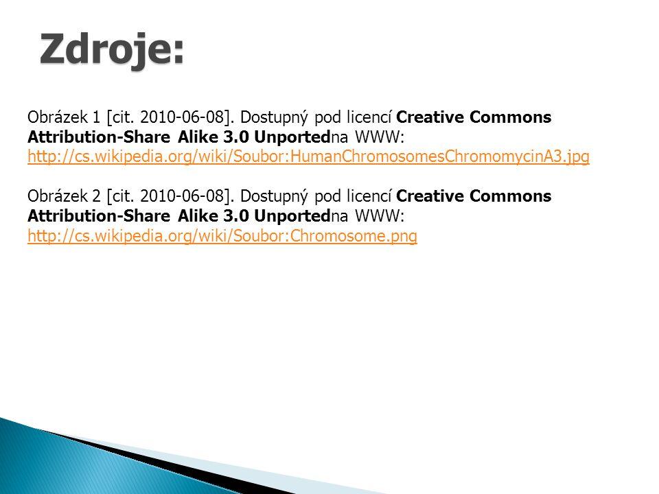 Zdroje: Obrázek 1 [cit. 2010-06-08].