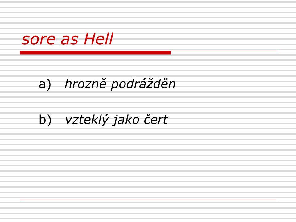 sore as Hell a) hrozně podrážděn b) vzteklý jako čert