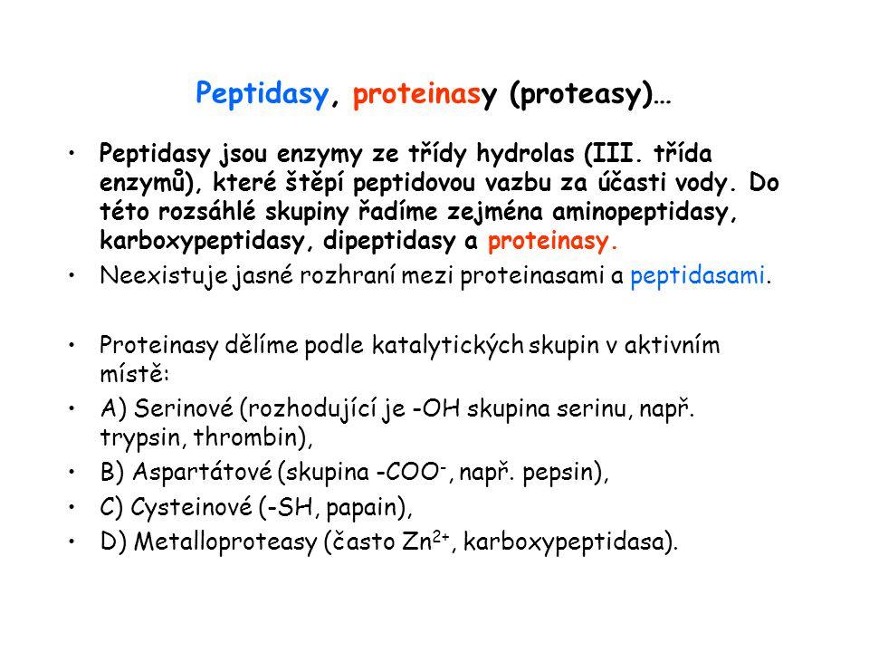Peptidasy, proteinasy (proteasy)… Peptidasy jsou enzymy ze třídy hydrolas (III. třída enzymů), které štěpí peptidovou vazbu za účasti vody. Do této ro