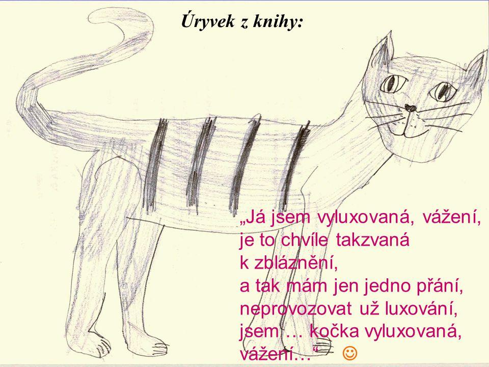 """Úryvek z knihy: """"Já jsem vyluxovaná, vážení, je to chvíle takzvaná k zbláznění, a tak mám jen jedno přání, neprovozovat už luxování, jsem … kočka vyluxovaná, vážení…"""