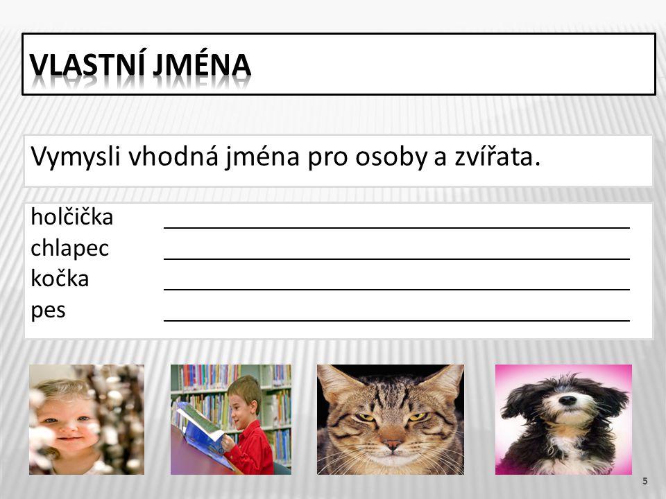 5 Vymysli vhodná jména pro osoby a zvířata. holčička chlapec kočka pes