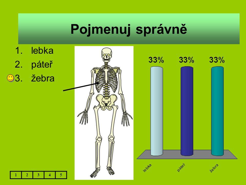 Přírodověda – Kostra II.– 5.ročník Použitý software: držitel licence – ZŠ J.