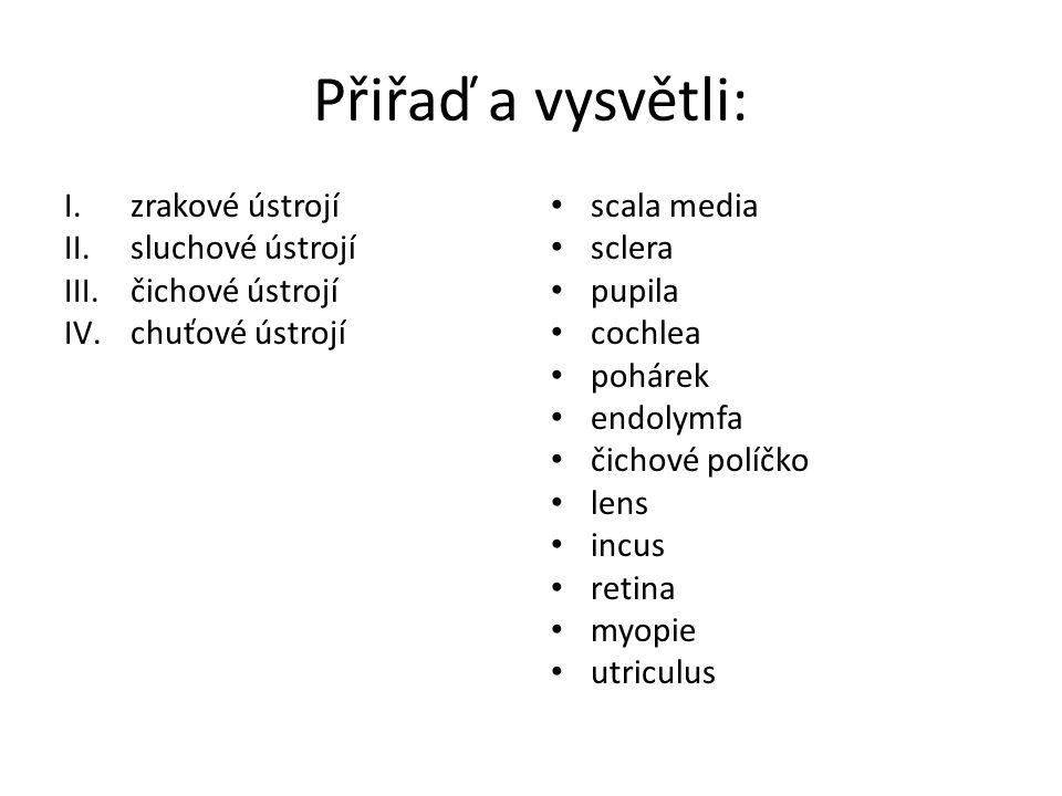 Přiřaď a vysvětli: I.zrakové ústrojí II.sluchové ústrojí III.čichové ústrojí IV.chuťové ústrojí scala media – hlemýžďový kanálek sclera - bělima pupila - zornice cochlea - hlemýžď pohárek endolymfa čichové políčko lens - čočka incus - kovadlinka retina - sítnice myopie - krátkozrakost utriculus – vejčitý váček