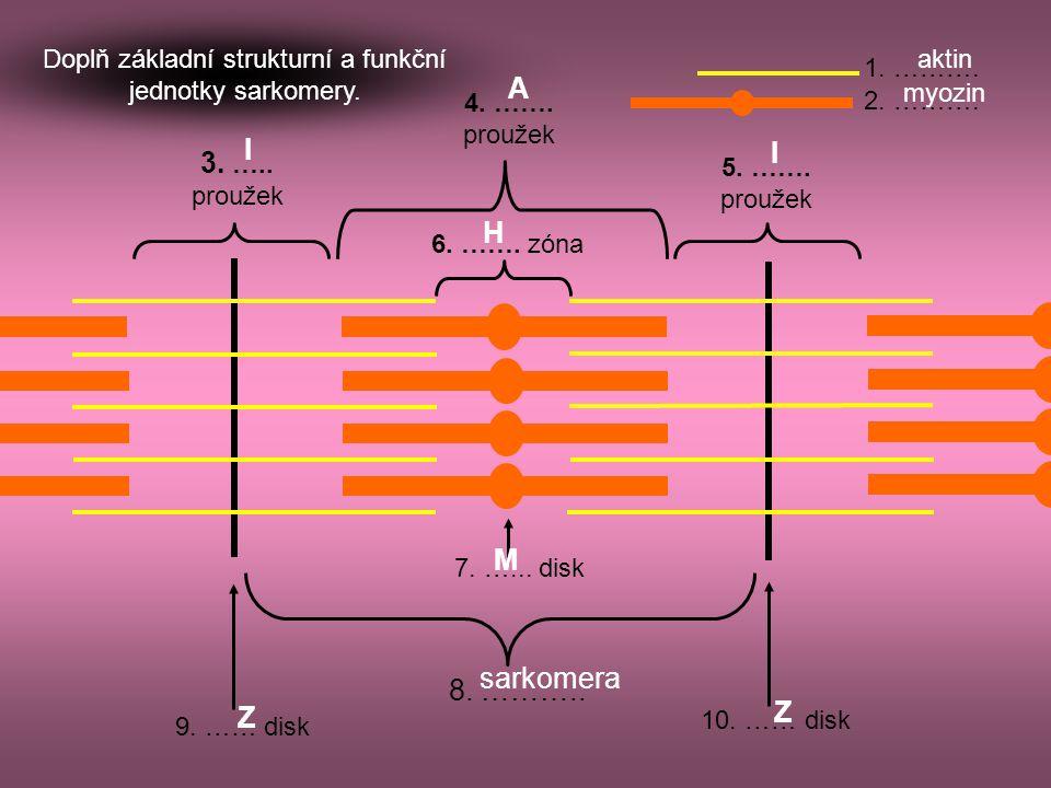 9. …… disk 8. ……….. 1. ………. 2. ………. 3. ….. proužek 4. ……. proužek 7. …... disk 5. ……. proužek 6. ……. zóna 10. …… disk Doplň základní strukturní a funk