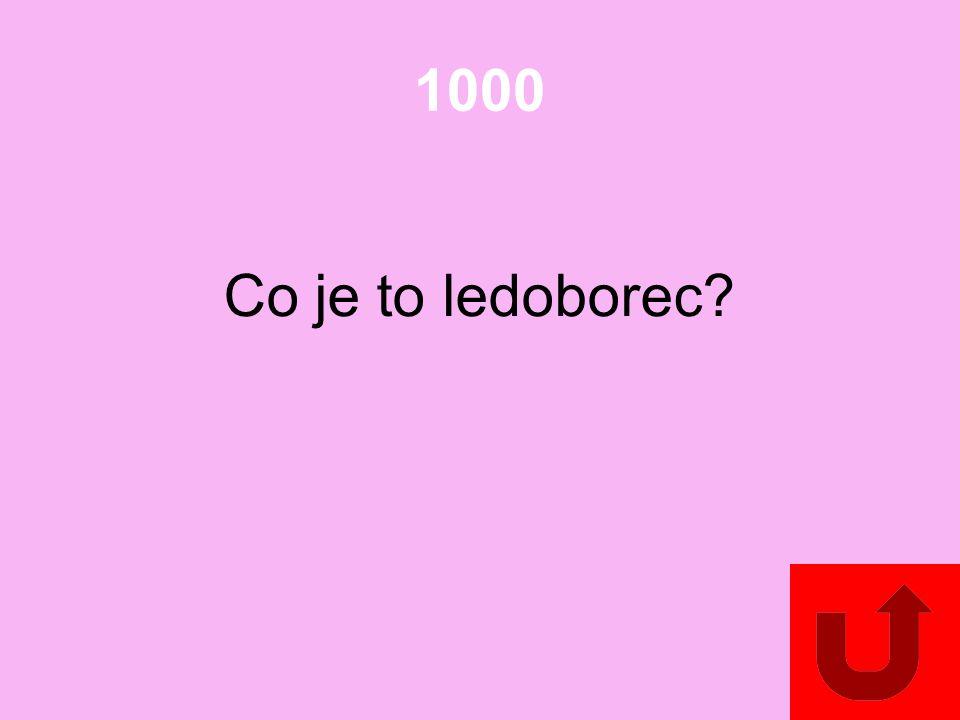 1000 Co je to ledoborec?